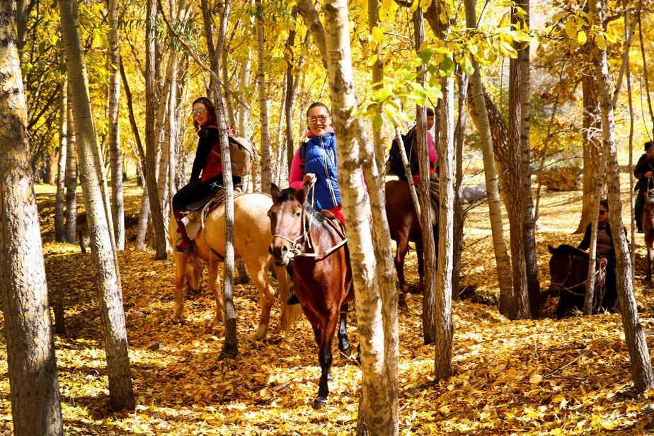 Horseback Trek thru Mongolia